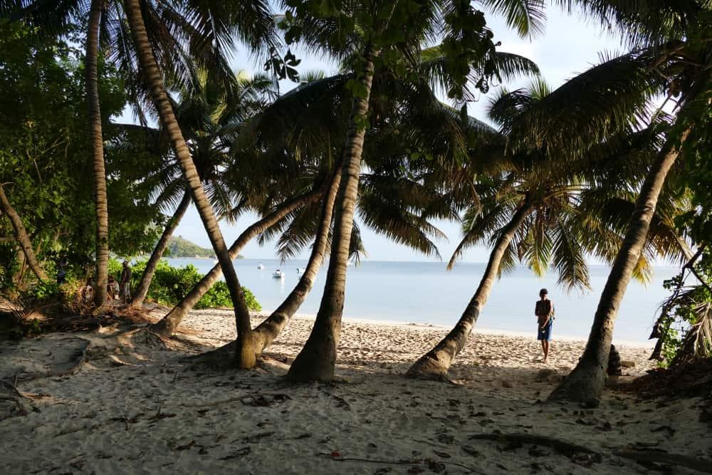 seychellen-bilder-310